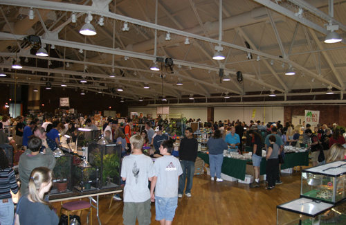 New England Reptile Expo